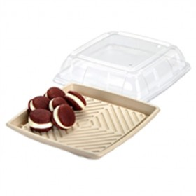 Small Square Pulp Platter with PET Lid - Packaging Direct